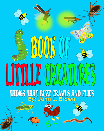 Book Of Little Creatures